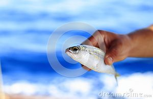fish-out-water-fisherman-was-holding-caught-34836337